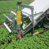 Self-propelled aromatic plant harvester on wheels 8000-Aromatica Ortomec
