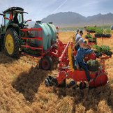 Trium Not Till Transplanting machine