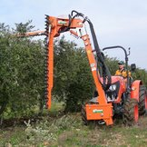 Pruner for orchards (olive/orange trees etc) - ORPL - Rinieri